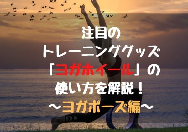 注目のトレーニンググッズ「ヨガホイール」の使い方を解説!〜ヨガポーズ編〜